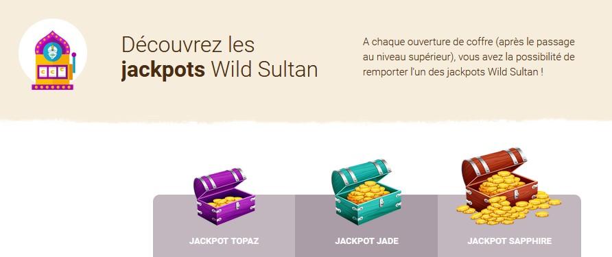 Jackpots exclusifs chez Wild Sultan